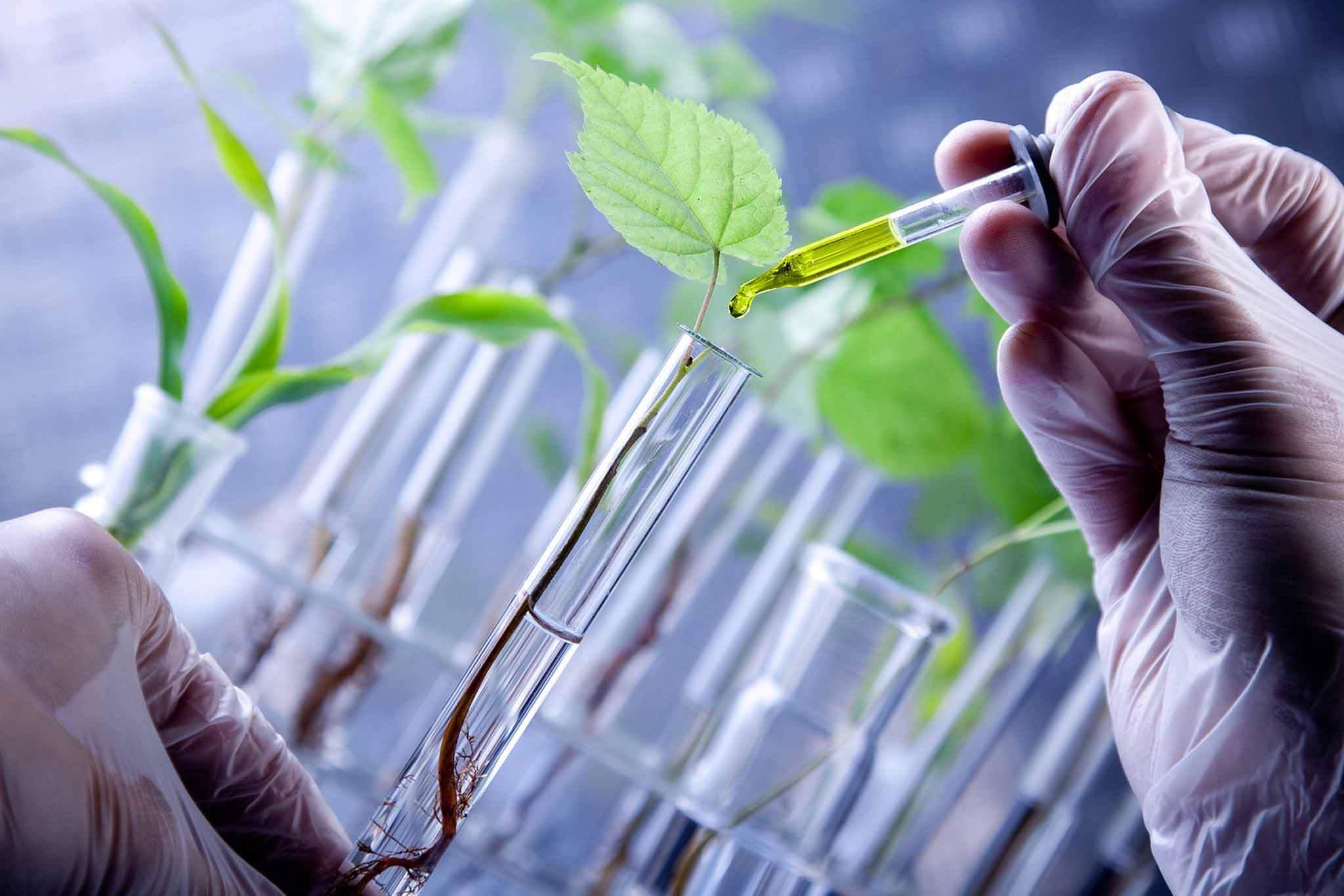 Biotechnologie Rekrutierung